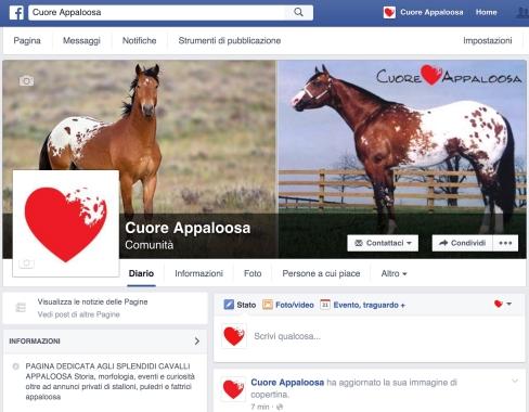 facebook-cuore-appaloosa