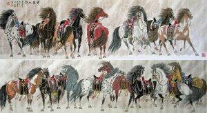 cina cavalli appaloosa come mezzo di trasporto lavor e gioco polo
