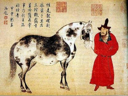 cina cavallo appaloosa