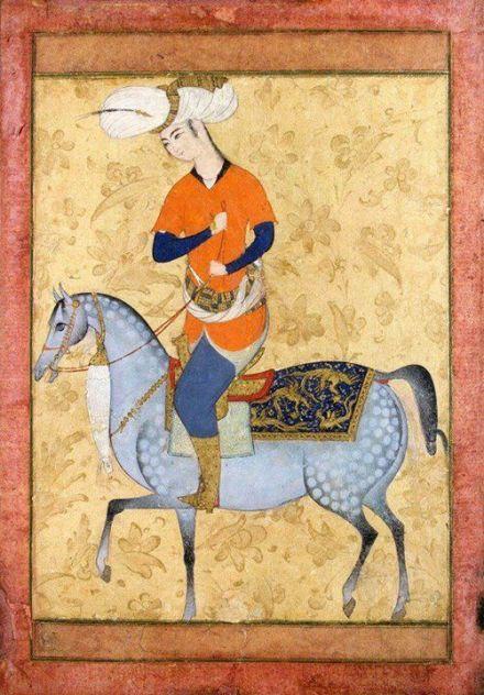 miniatura di cavallo persiano appaloosa