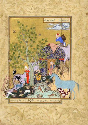miniatura persiana con cavallo appaloosa leopard