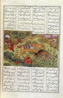 Raksh-stallone -appaloosa comabatte il leone-mentre-Rostam-dorme-2