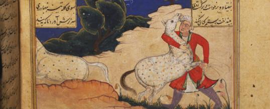 Rostam-cattura-Raksh-cavallo-Appaloosa