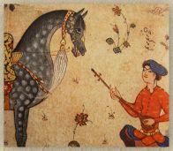 uncavallo persiano maculato con un musicista