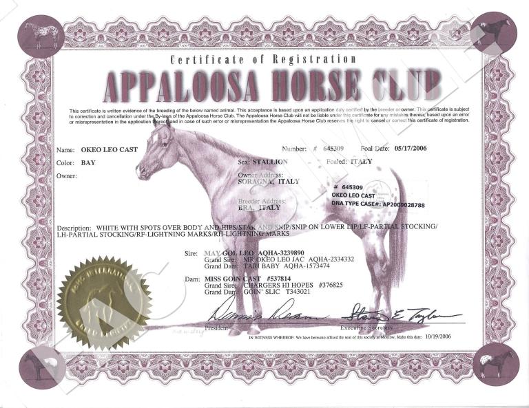 certificato-appaloosa-okeo-leo-cast