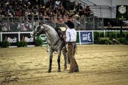 BOEMIL TWIN ROBOTOP stallone appaloosa reining Giuseppe Prevosti