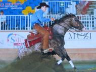 BOEMIL TWIN ROBOTOP stallone appaloosa reining stop prevosti