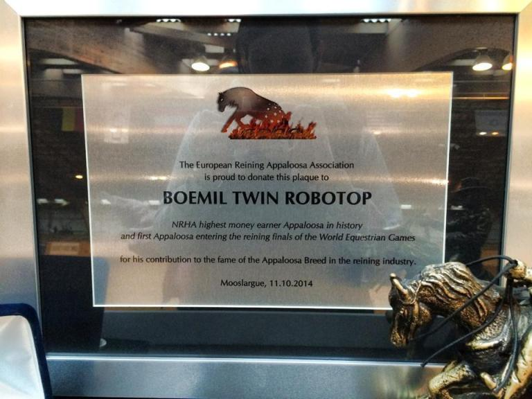 BOEMIL TWIN ROBOTOP stallone appaloosa reining targa