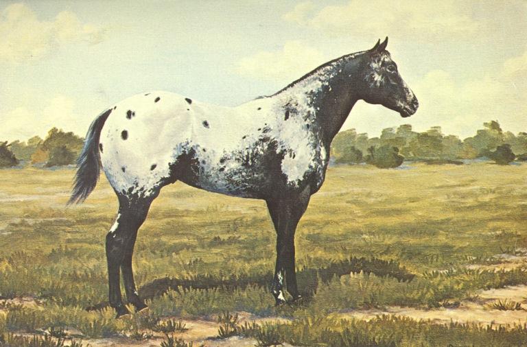 rustlercharger