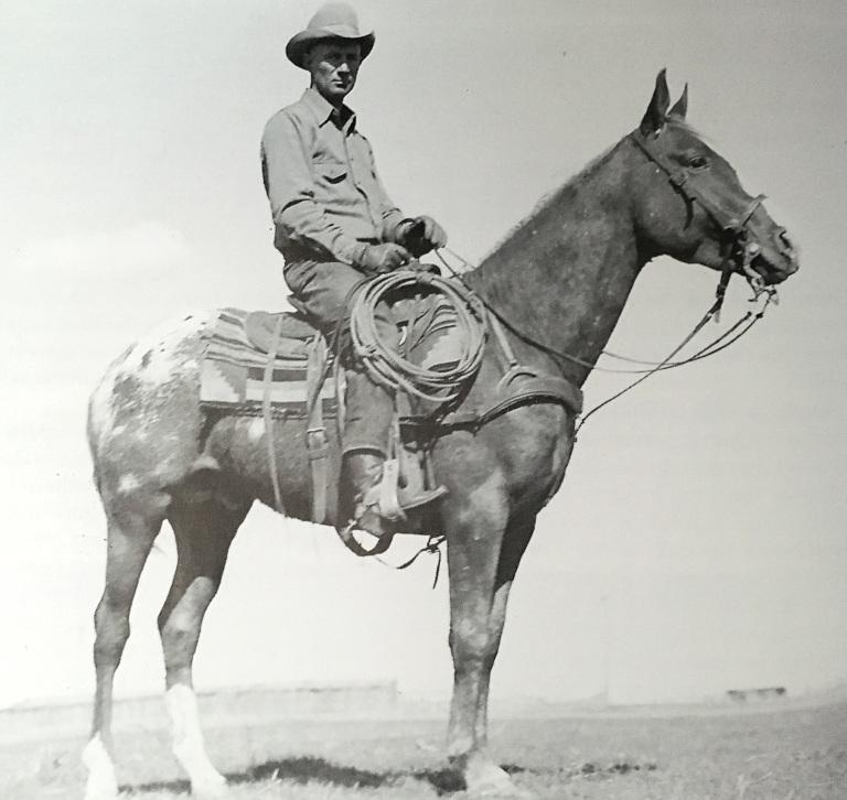 Stallone appaloosa Apache e Orvil Sears