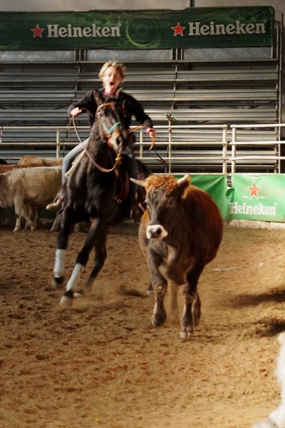 Cavalla Appaloosa Aris Phenomenal Tess cutting