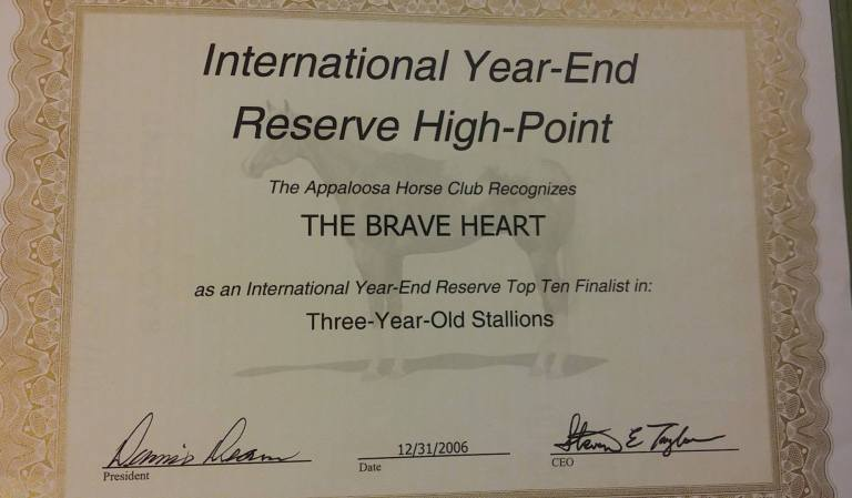 stallone appaloosa the brave heart reserve