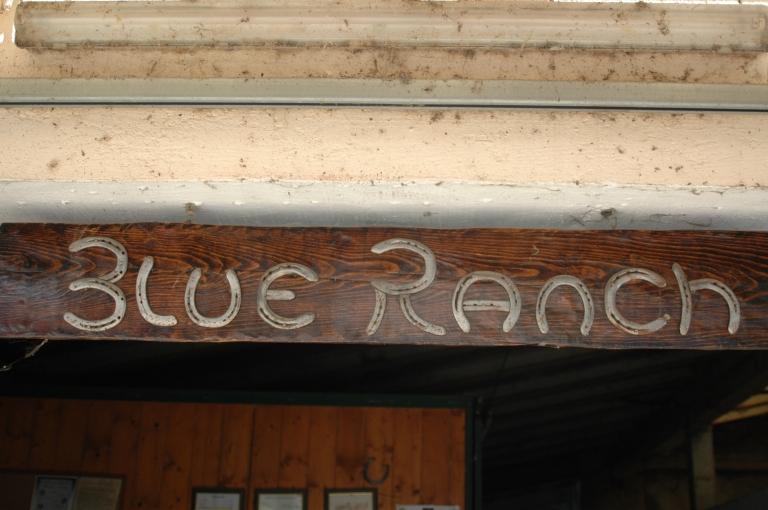 allevamento appaloosa blue ranch insegna.jpg