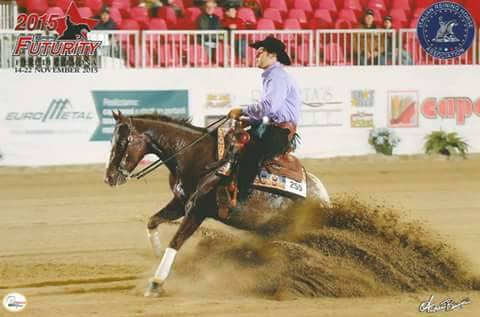 stallone-appaloosa-reining-frosted-on-top-stop