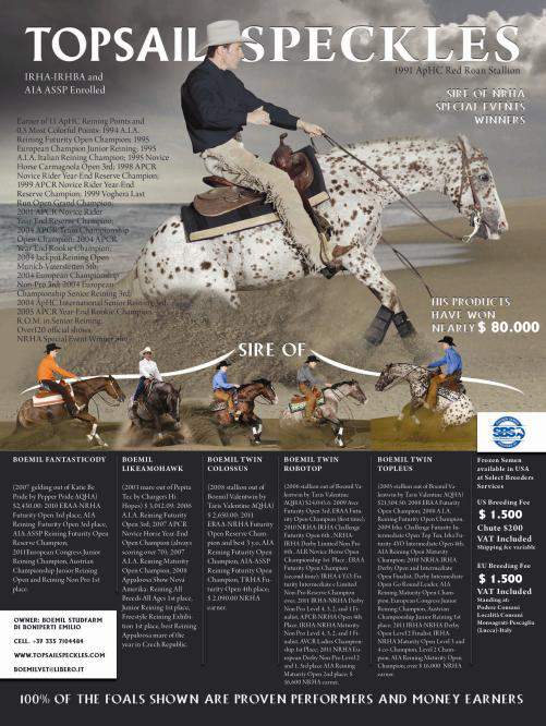 stallone-appaloosa-reining-topsail-speckles-sire