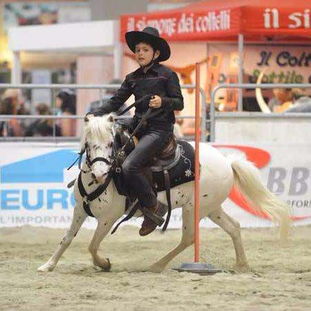 Pony-Western-