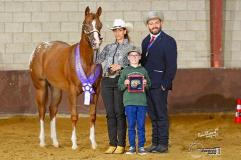investment package offspring appaloosa