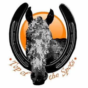 top of the spots horses breeding