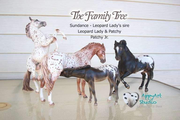 tj hurst appaloosa Sundance, Patchy, Patchy JR models